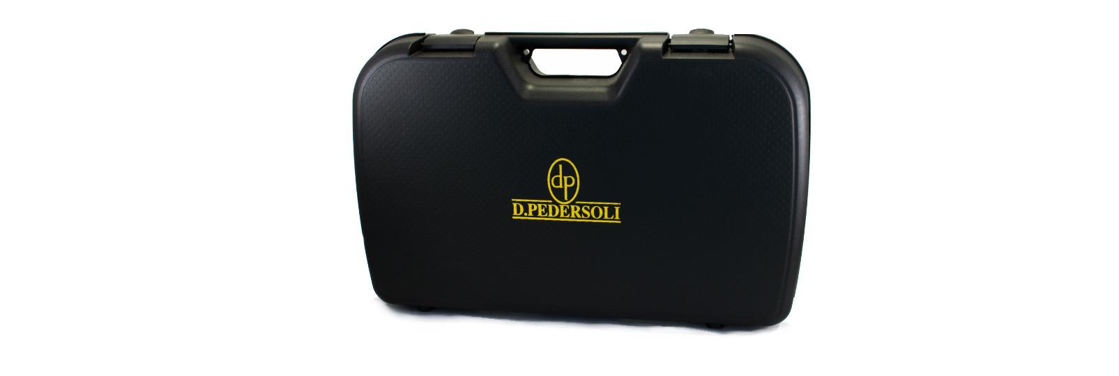 Standard pistol case
